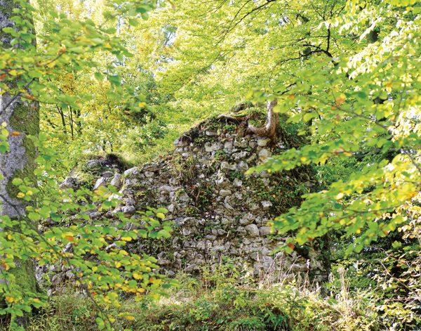 Am Turmstumpf der Burgruine Hohenburg findet ein Konzert der besonderen Art statt